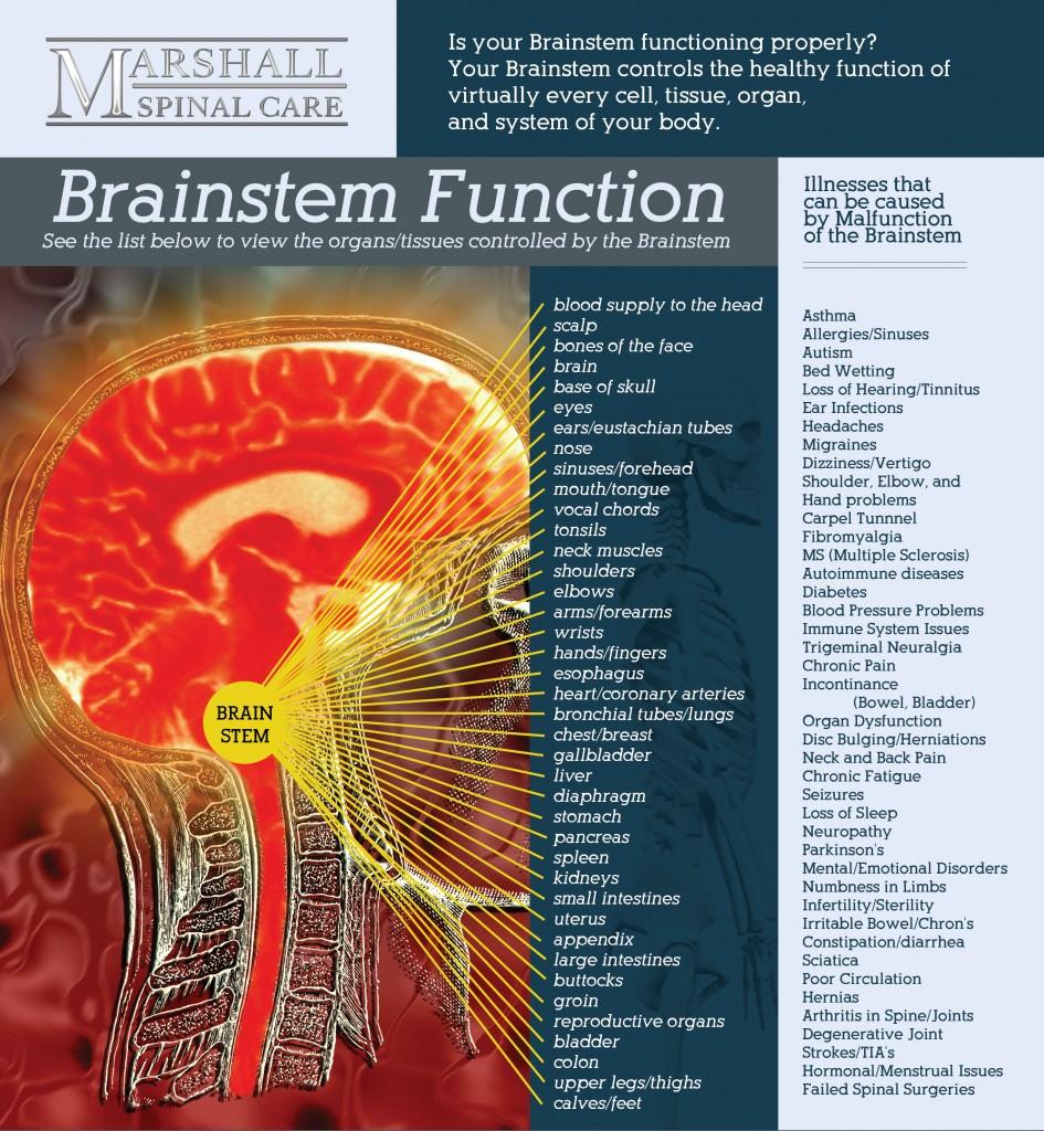 brainstem-flyer-front_